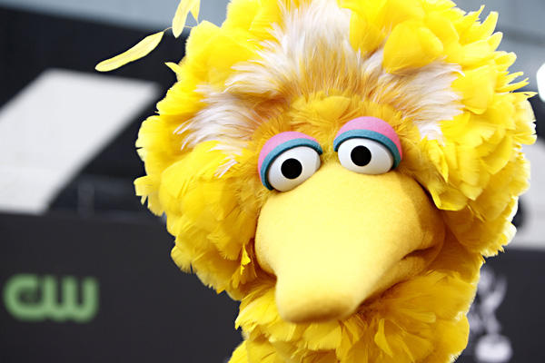 Big Bird Wants Out of the Obama Campaign – NOW!