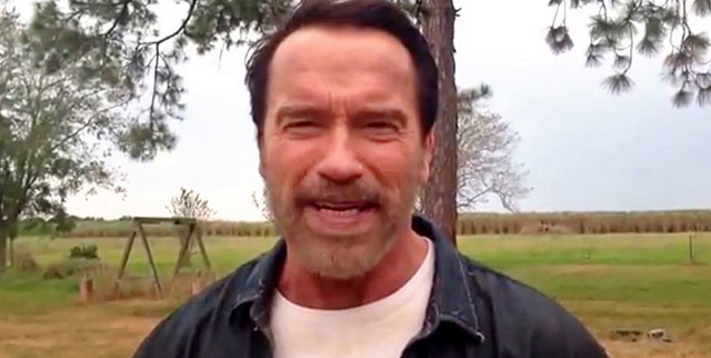 Arnold Schwarzenegger Riding A Toy Horse Is The Best Video You Will See Today
