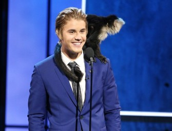 Some Of The Best Jokes From The Roast Of Justin Bieber