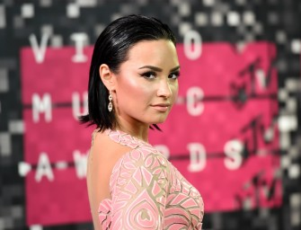 Pink Speaks The Truth About The VMAs, Demi Lovato Fights Back On Her Twitter Account!