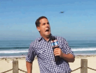 Watch: News Reporter FREAKS OUT When Large Bug Attacks Him During Live Shot!