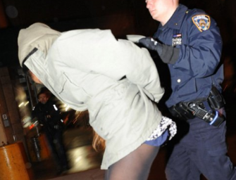 Azealia Banks Gets Free Ride To Jail After Biting The Breast Of A Female Security Guard!