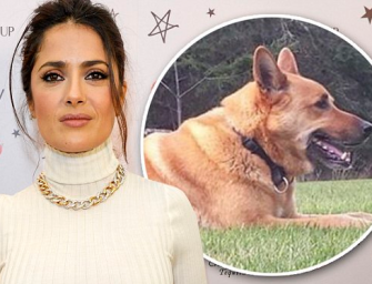 Salma Hayek Thanks Her Fans For Supporting Her After Neighbor Shoots And Kills Her Dog