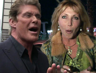 Rich People Problems: David Hasselhoff Claims He's Barely Making It On $112k A Month!!!