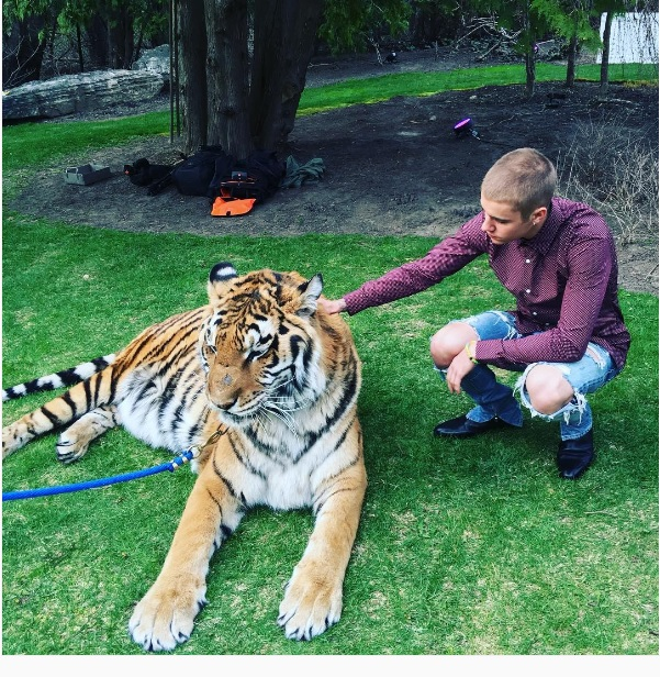 Justin Bieber and Tiger