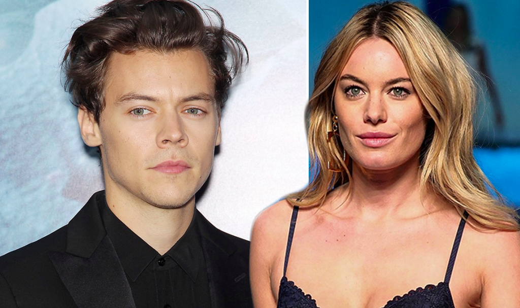 New Harry Styles Track 'Cherry' Proves He Fell Hard For Ex-Girlfriend Camille Rowe (AUDIO)
