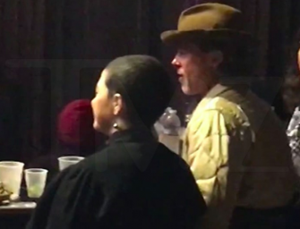 Brad Pitt Spotted Hanging With Mystery Woman At Thundercat Concert
