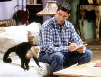 LOL, WHAT? 'Friends' Monkey Trainer Slams David Schwimmer, Claims He Was Jealous Of Marcel