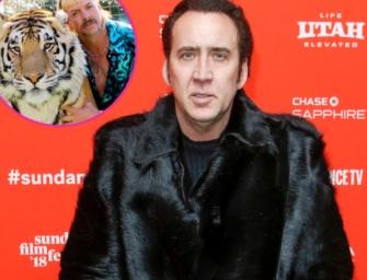 Say It Ain't So! Nicolas Cage Will No Longer Star As Tiger King's Joe Exotic